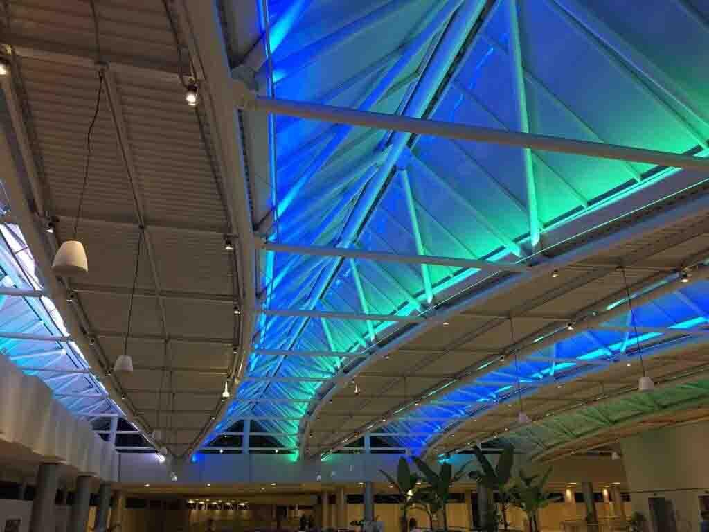 arquitectura y diseño de techo