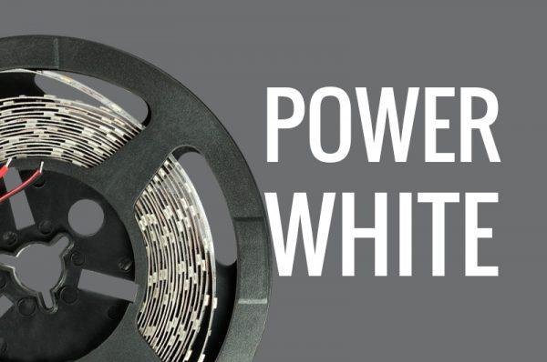 Tira LED alta luminosidad blanco frío