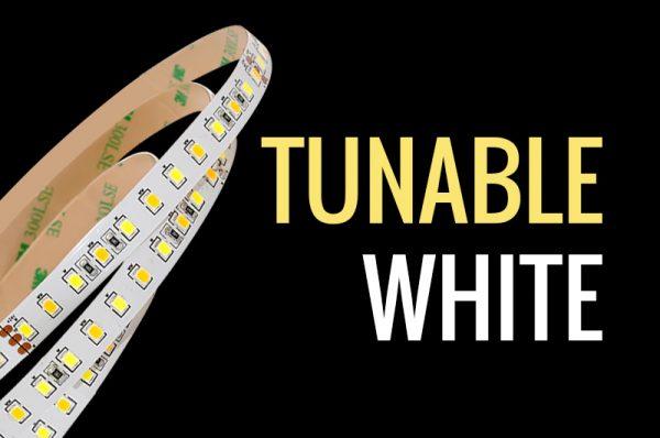 LED tunable white para luz ambiental